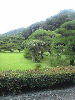 niwa_20100728094155.jpg