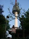 souru_20090615143504.jpg